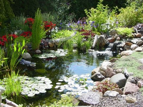 small backyard pond pictures charmed dreaming of a backyard pond