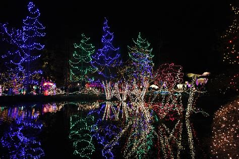 the season of lights is a wonderful time for you to bond