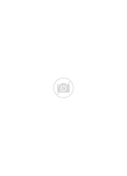 Rodgers Packers Aaron Bay 1art