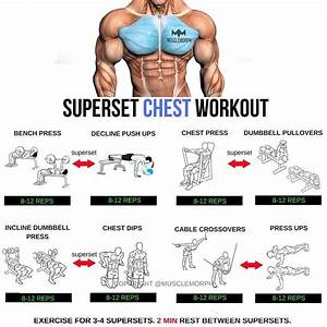 Step By Step Complete Workout Tip And Guide Demographics