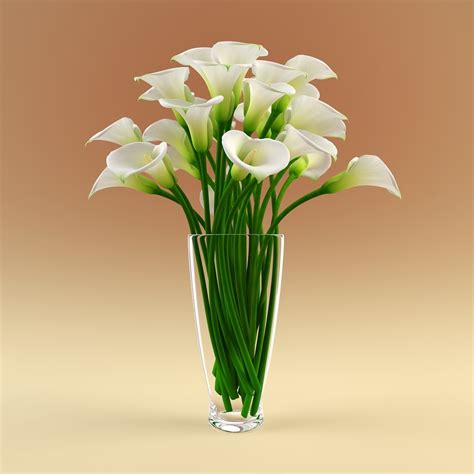 Flowers For Vase by Vase Calla Flowers 3d Model