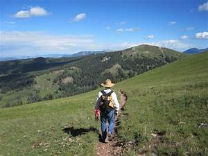 Summary Of Qualifications For Entry Level Woods Canyon Archaeological Consultants Inc Statement Of