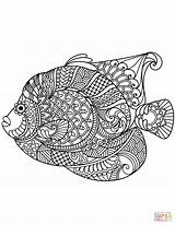 Zentangle Coloring Pages Angelfish Mandala Printable Adult Paw Fish Adults Svg Colouring Animal Patterns Background Drawing Categories Discover sketch template