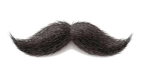 Moustache Png Transparent Images