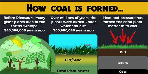 How Coal Is Formed On Earth  Ea Coalfield. White Kitchen Faucets. High Gloss White Kitchen Doors. Painting Kitchen Cabinets Antique White. Creative Storage Ideas For Small Kitchens. Black And White Kitchen Wallpaper. Small Kitchen Island With Bar Stools. Small Wooden Kitchen Tables. Kitchen Diner Design Ideas