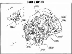 Nissan Truck Parts