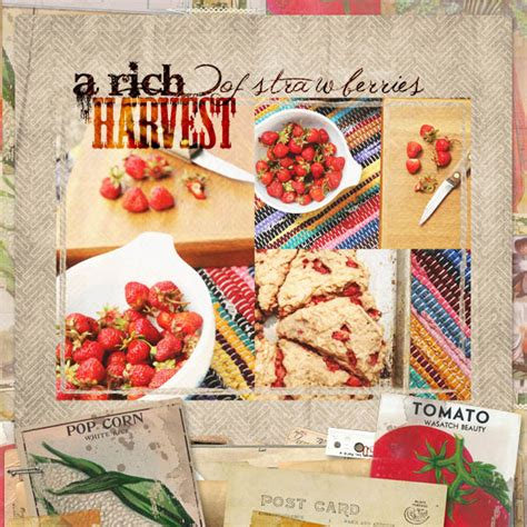 scrapbooking cuisine grow cook shoot food photo tips more cottagearts