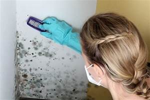 Wie Entsteht Schimmel : moisissure sur les murs astuce de grands m res ~ Bigdaddyawards.com Haus und Dekorationen