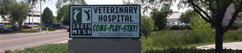 About South Mesa  South Mesa Veterinary Hospital  Fort. Best Plastic Surgeons In Seattle. Loans For College Expenses Www Heartgard Com. Alternative Investments Mutual Funds. Top E Commerce Companies My Internet Settings. Masters Instructional Design. Mid South Transplant Foundation. Part Submission Warrant Medical Detox Alcohol. Colleges Near Lansing Mi Email For Businesses