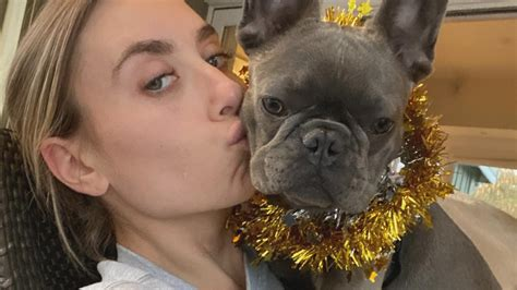 Woman's French Bulldog Stolen at Gunpoint as Dog Thefts in ...
