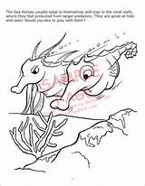 Coloring Underwater Adventure sketch template