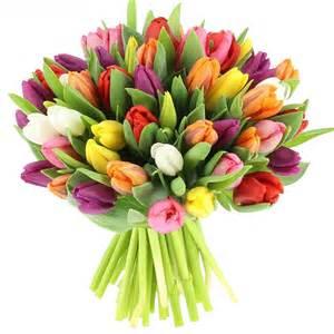 felicitations de mariage livraison bouquet de tulipes multicolores 25 tiges bouquet de fleurs foliflora