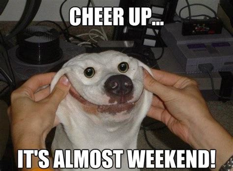 Cheer Up Meme - 10 funny weekend memes that will keep you ready for the weekend