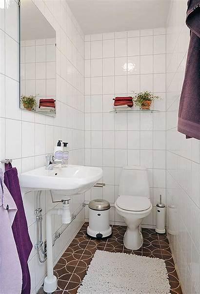 Bathroom Apartment Themes Cozy Bright Simple Decoration