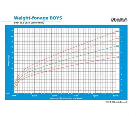 sample weight chart  boy  documents  word