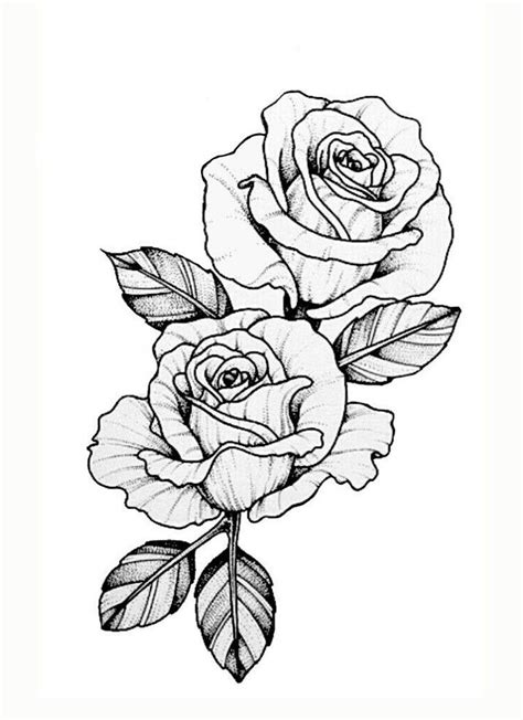 49 best Money rose images on Pinterest | Tattoo ideas, Rose tattoos and Tattoo designs