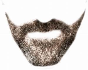 Designer beard transparent background ~ Free Png Images