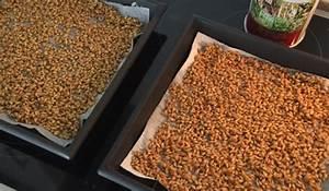 Melone Selber Ziehen : gerstengras und weizengras selber ziehen ~ Frokenaadalensverden.com Haus und Dekorationen