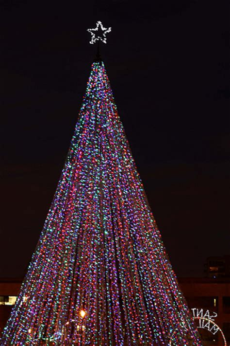 giant christmas tree of lights flickr photo sharing