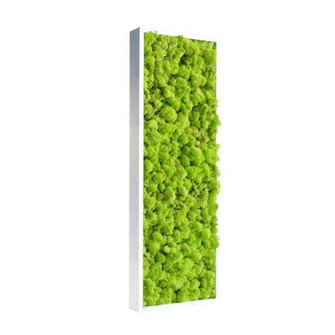 tableau de bureau tableau de lichen stabilisé vert citron pour bureau