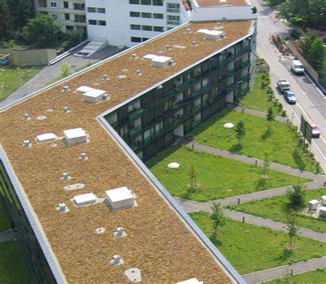 Dachbegruenung Natuerliche Klimaanlage by Dachbegr 252 Nung Morath Ag