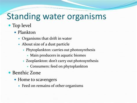 freshwater biome powerpoint  id