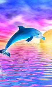 Animated Dolphins - Bing Images | Dolphinz | Pinterest