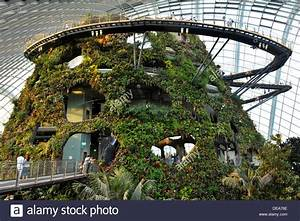 Singapore Tourist Attractions - Inside the Cloud Forest ...