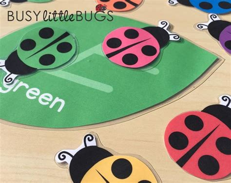 ladybug colour match  images color games