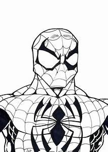 Spiderman Malvorlagen Spiderman Ausmalbilder Kostenlos