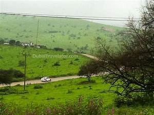 How to go to Salalah from Dubai - Places to visit ...