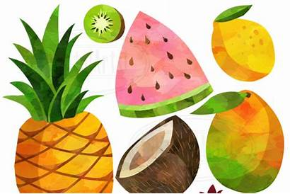Clipart Watercolor Fruits Fruit Graphics Thehungryjpeg Cart