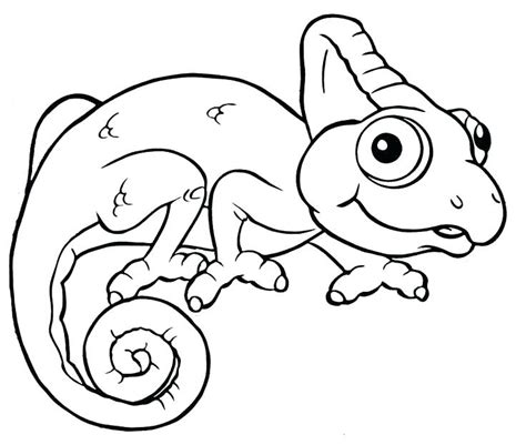 Mixed Up Chameleon Coloring Page by Chameleon Drawing Template At Getdrawings Free For