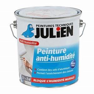 Traitement Anti Humidité : peinture anti humidit int rieur julien 2 5l castorama ~ Dallasstarsshop.com Idées de Décoration