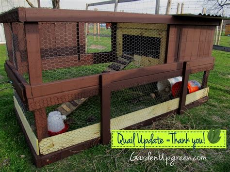 quail hutches modifications to my quail set up a post for those