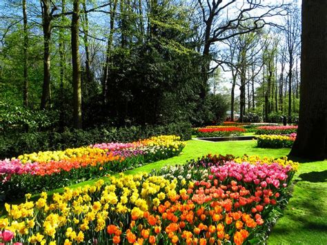 62 Best Images About Jardines Espectaculares On Pinterest