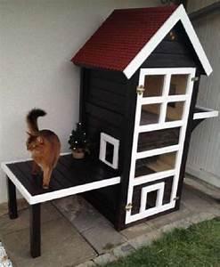 Kleine Holzbank Für Draußen : katzenhaus behrs kleintierst lle ~ Bigdaddyawards.com Haus und Dekorationen
