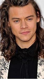 Harry Styles Net Worth, Life, Career, One Direction, Assets