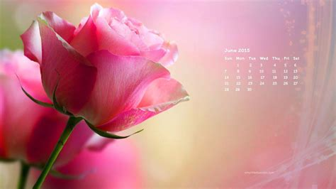 Desktop Wallpapers Calendar June 2017 - Wallpaper Cave