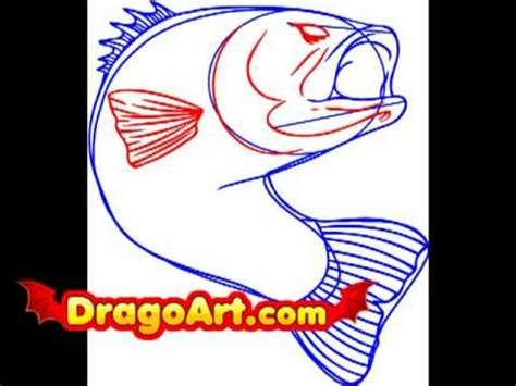 How To Draw A Bass Boat Step By Step by How To Draw A Bass Fish Step By Step