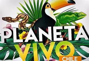 Promoci U00f3n Planeta Vivo Paga  2 660  Ahorra Un 30