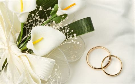 bridal bouquet  flowers wallpapers   fun