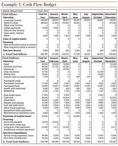 cash flow budget template budget template free With farm cash flow template