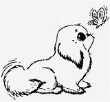 Coloring Dog Puppies Seekpng sketch template