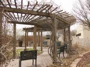 Grape Arbor Rio Rancho Waterwise Garden Japanese Style Gazebo Designs For The Home Garden