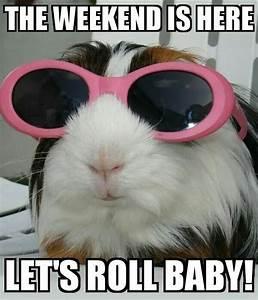 Happy Saturday Memes & Funny Saturday Night Meme
