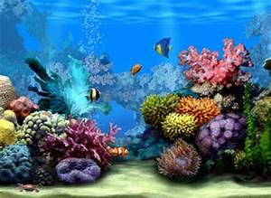 mobil GW: Marine Life 3D Screensaver