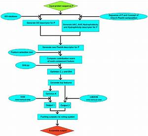 This Graph Shows The Flow Chart For Application Of Knn And