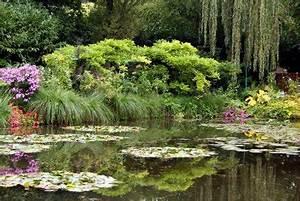 Essig Gegen Algen : hausmittel gegen algen im gartenteich ~ One.caynefoto.club Haus und Dekorationen