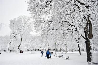 Montreal Park Winter Royal Mont Travel Wonderland